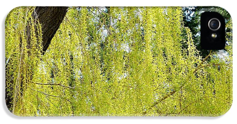 Spring Weeping Willow IPhone 5 / 5s Case featuring the photograph Spring Weeping Willow by Will Borden