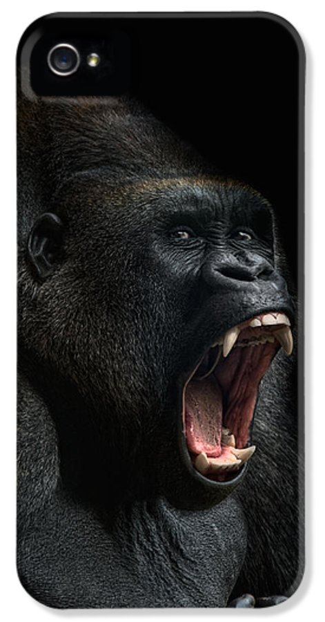 Animal IPhone 5 / 5s Case featuring the photograph Stay Away by Joachim G Pinkawa