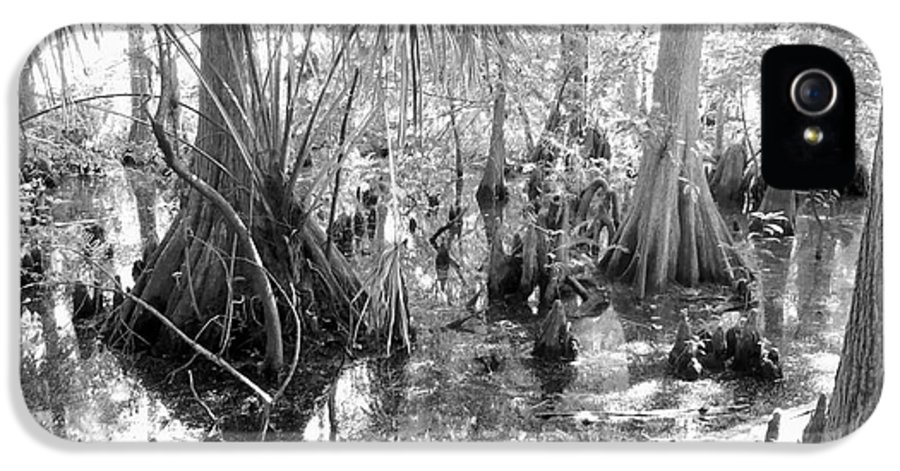Swamp IPhone 5 / 5s Case featuring the photograph Swampland by Carey Chen