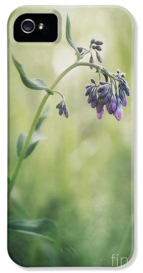 Mertensia Paniculata IPhone 5 / 5s Case featuring the photograph The Arrival Of Spring by Priska Wettstein