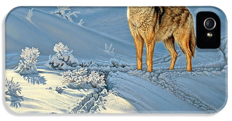 Wildlife IPhone 5 / 5s Case featuring the painting the Coyote - God's Dog by Paul Krapf