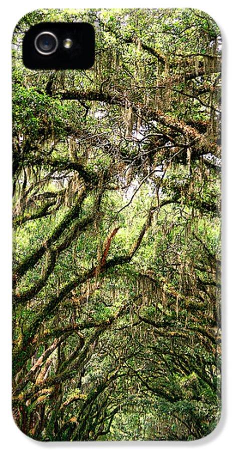 Savannah IPhone 5 / 5s Case featuring the photograph The Green Mile Savannah Ga by William Dey