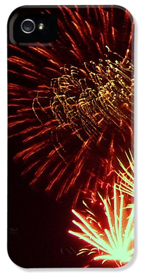 4th Of July IPhone 5 / 5s Case featuring the photograph The Land Of The Free by Robert ONeil