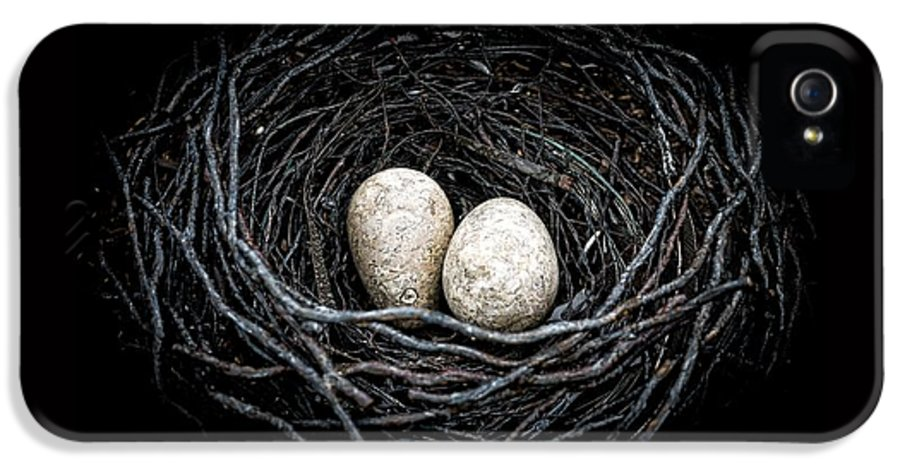 Bird IPhone 5 / 5s Case featuring the photograph The Nest by Edward Fielding