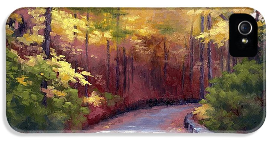 Autumn Paintings IPhone 5 / 5s Case featuring the painting The Old Roadway In Autumn II by Janet King