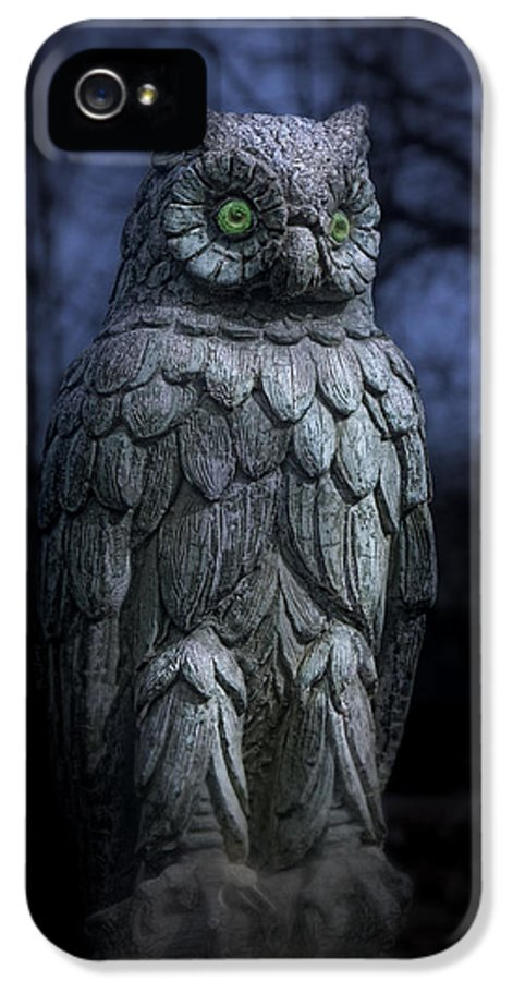 Owl IPhone 5 / 5s Case featuring the photograph The Owl by Tom Mc Nemar