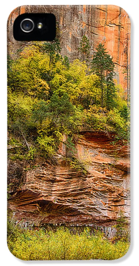 Fall IPhone 5 / 5s Case featuring the photograph The Writing On The Wall by Saija Lehtonen