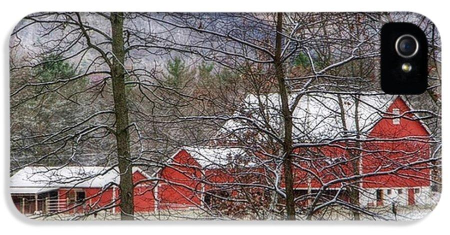 Barn IPhone 5 / 5s Case featuring the photograph Through The Trees by Stephanie Calhoun