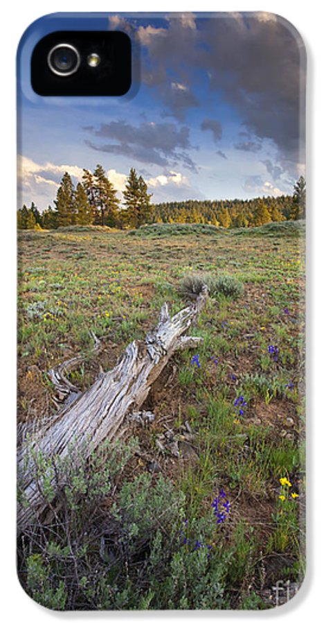 Meadow. Rocky IPhone 5 / 5s Case featuring the photograph Under Stormy Skies by Mike Dawson