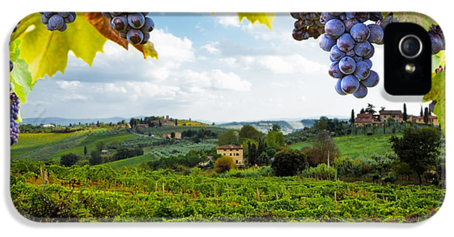 Italy IPhone 5 / 5s Case featuring the photograph Vineyards In San Gimignano Italy by Susan Schmitz
