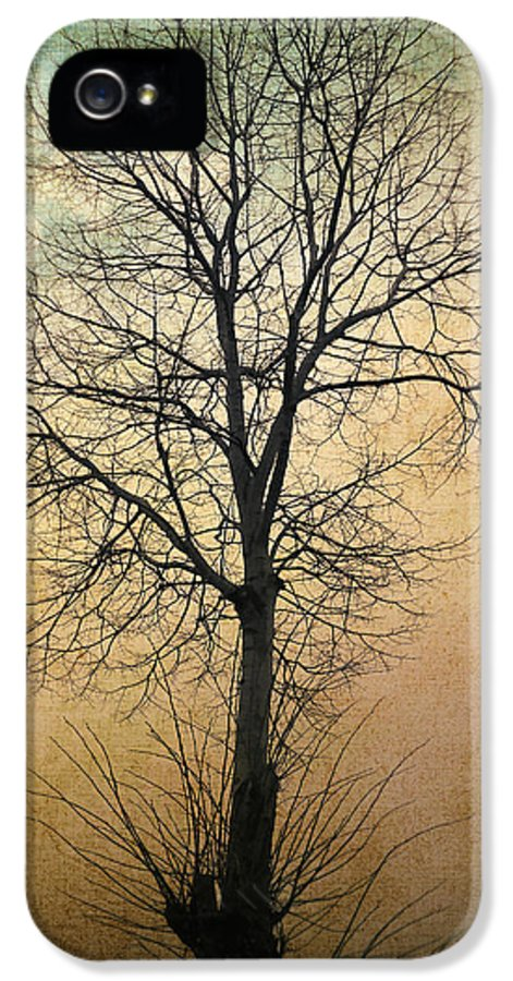 Tree IPhone 5 / 5s Case featuring the photograph Waltz Of A Tree by Taylan Soyturk