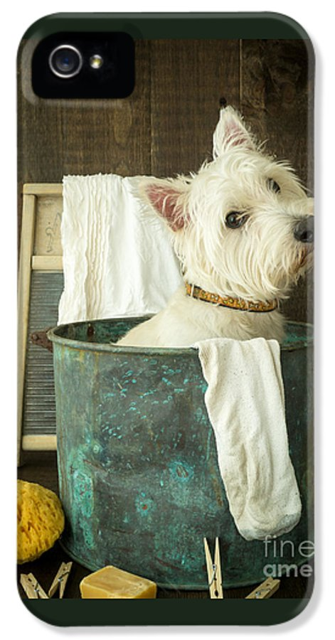 Dog IPhone 5 / 5s Case featuring the photograph Wash Day by Edward Fielding