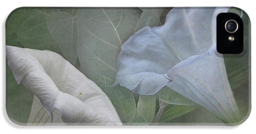 Whispers IPhone 5 / 5s Case featuring the photograph Whispers Of Angel Trumpet Datura by Angie Vogel