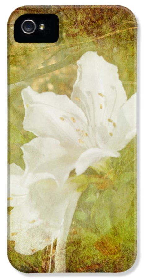 Flower IPhone 5 / 5s Case featuring the photograph White Azalea by Judy Hall-Folde