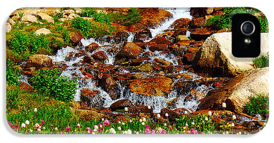 Wildflower IPhone 5 / 5s Case featuring the photograph Wildflower Waterfall by Tranquil Light Photography