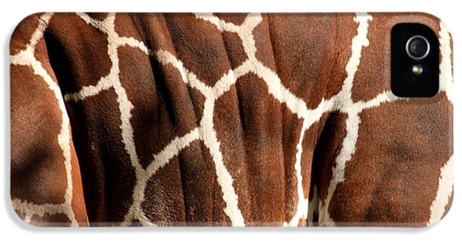Giraffe IPhone 5 / 5s Case featuring the photograph Wildlife Patterns by Aidan Moran