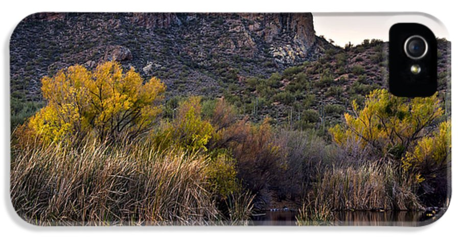 Reflect IPhone 5 / 5s Case featuring the photograph Willow Reflections by Dave Dilli