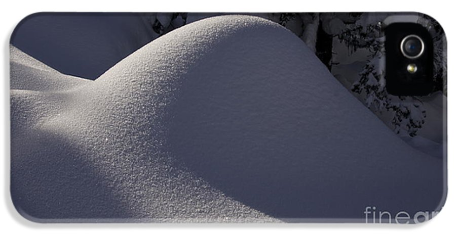 Photography IPhone 5 / 5s Case featuring the photograph Winter Abstract by Sean Griffin