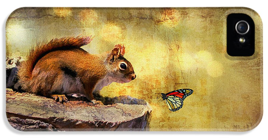 Wildlife IPhone 5 / 5s Case featuring the photograph Woodland Wonder by Lois Bryan