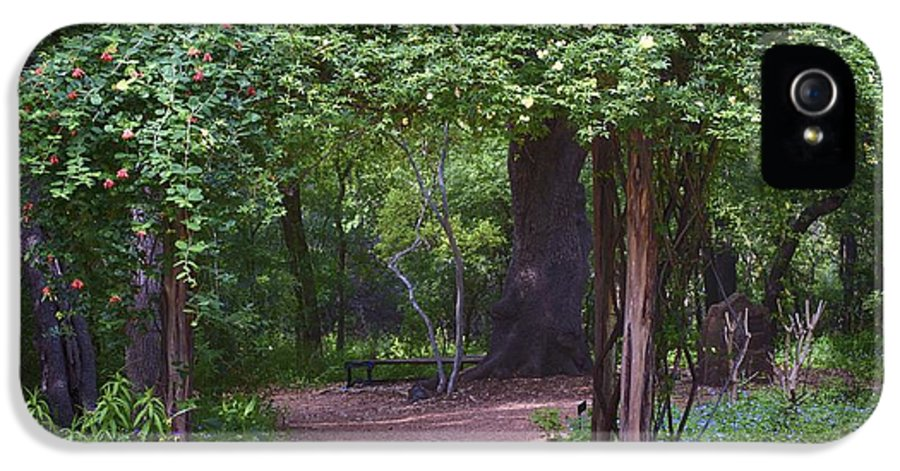 Tree Arbor Print IPhone 5 / 5s Case featuring the photograph Zilker Botanical Tree Arbor by Kristina Deane
