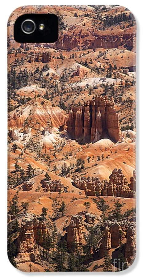 America IPhone 5 / 5s Case featuring the photograph Bryce Canyon by Jane Rix