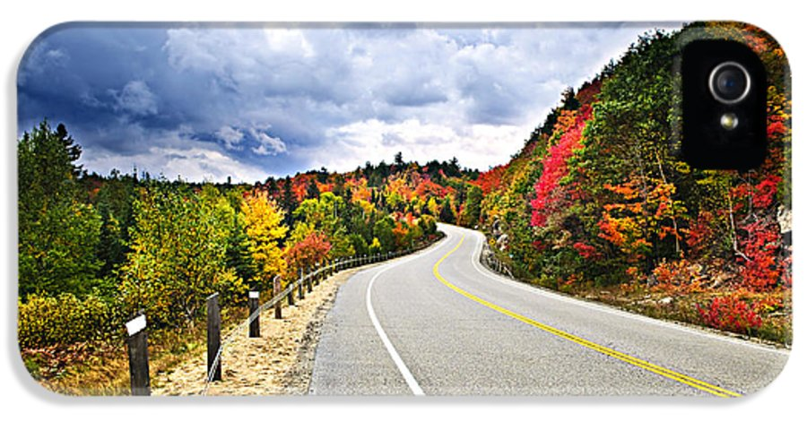 Road IPhone 5 / 5s Case featuring the photograph Fall Highway by Elena Elisseeva