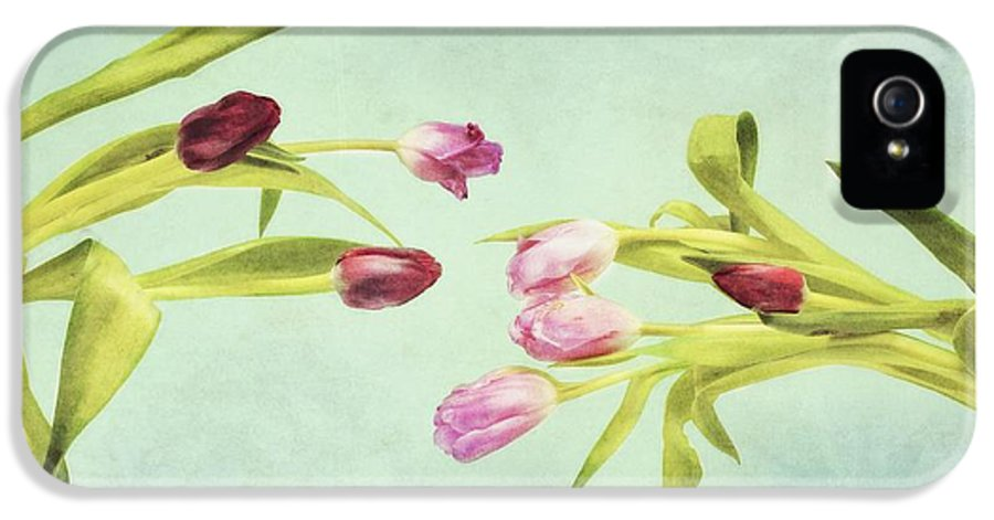 Art IPhone 5 / 5s Case featuring the photograph Eager For Spring by Priska Wettstein