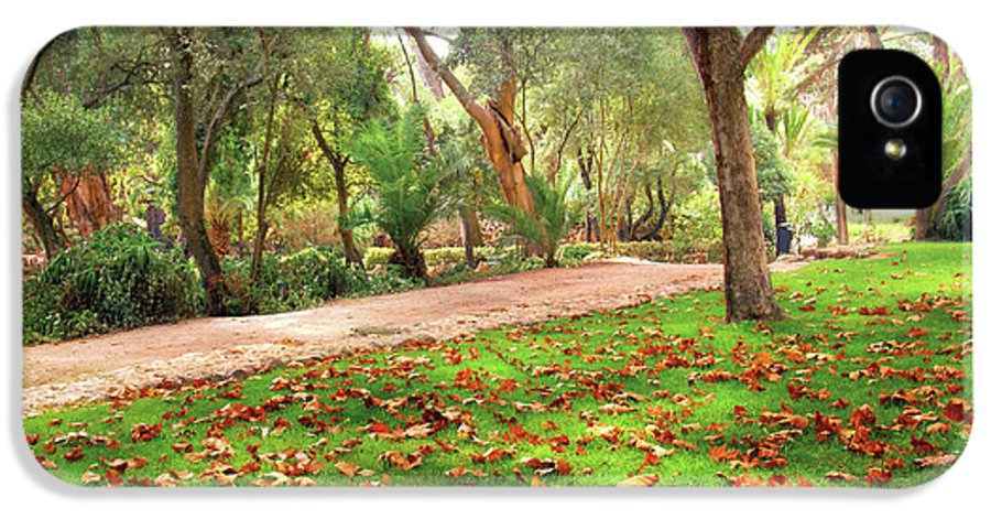 Alley IPhone 5 / 5s Case featuring the photograph Fall Park by Carlos Caetano