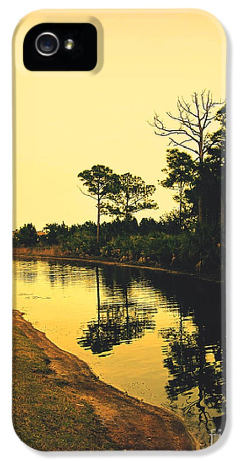 Florida IPhone 5 / 5s Case featuring the photograph Florida Landscape II by Susanne Van Hulst