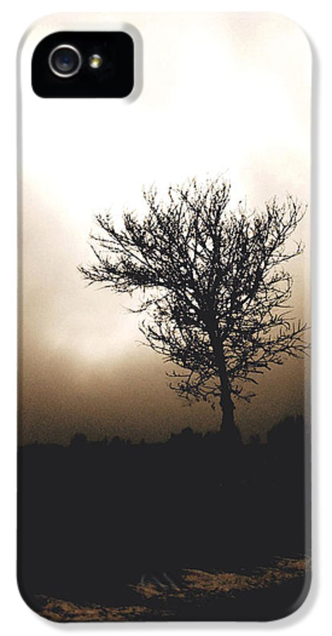 Landscape Photography IPhone 5 / 5s Case featuring the photograph Foggy Winter Morning by Ann Powell