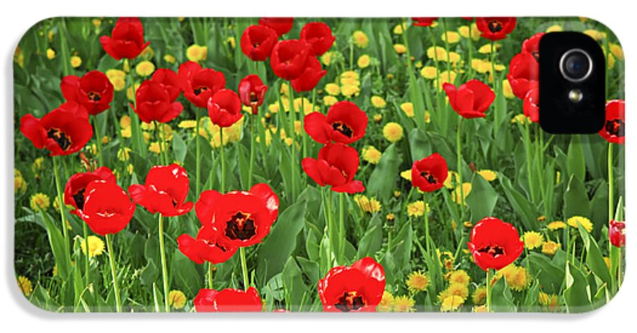 Tulip IPhone 5 / 5s Case featuring the photograph Meadow With Tulips by Elena Elisseeva