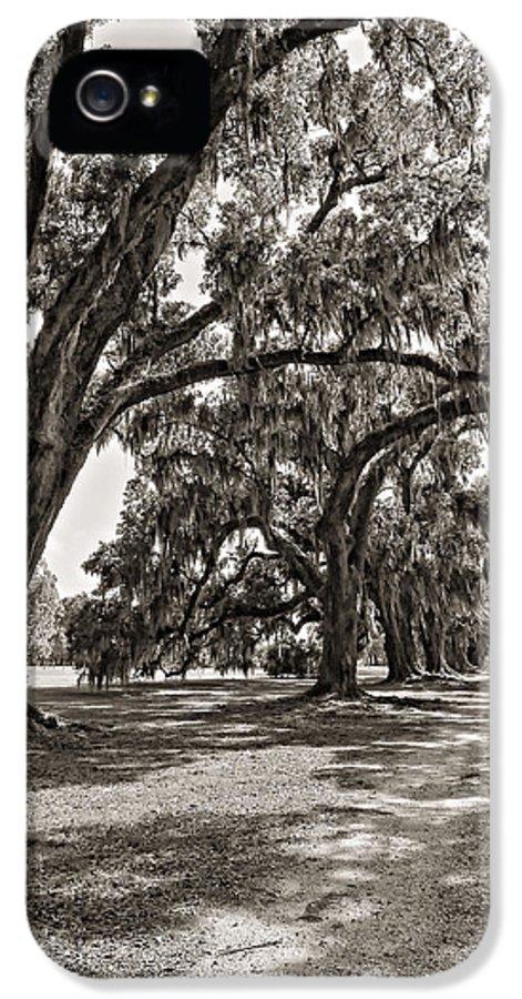 Evergreen Plantation IPhone 5 / 5s Case featuring the photograph Memory Lane Monochrome by Steve Harrington