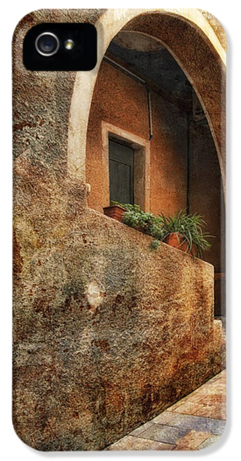 Art IPhone 5 / 5s Case featuring the pyrography North Italy 3 by Mauro Celotti