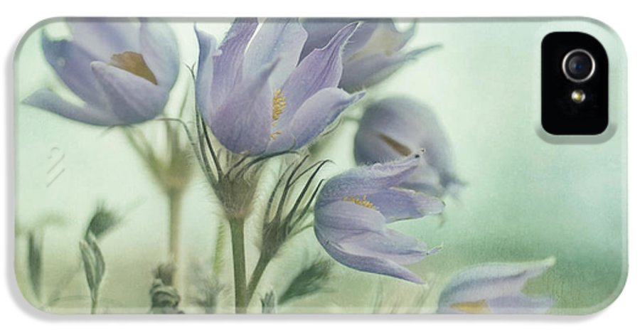 Recreation Site IPhone 5 / 5s Case featuring the photograph On The Crocus Bluff by Priska Wettstein