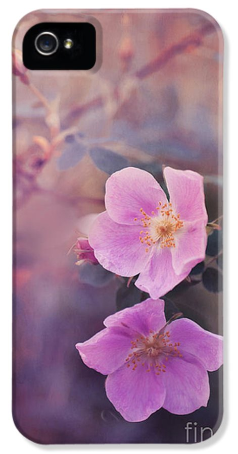 Rosa Acicularis IPhone 5 / 5s Case featuring the photograph Prickly Rose by Priska Wettstein