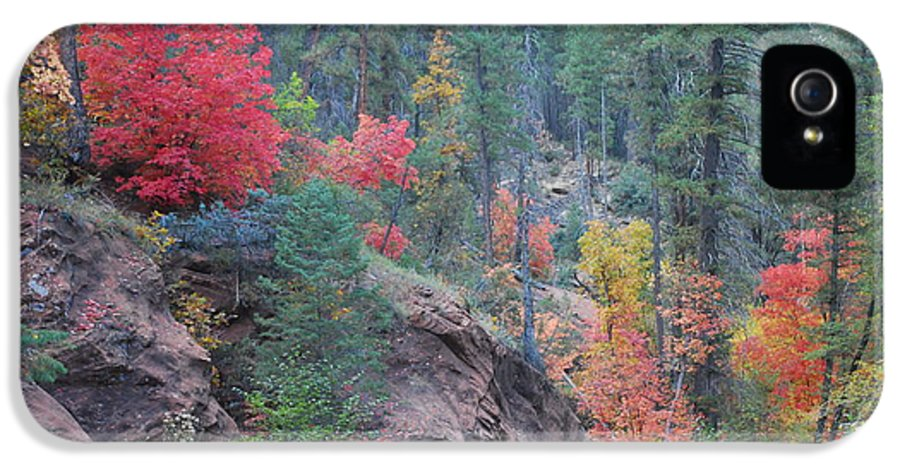 Sedona IPhone 5 / 5s Case featuring the photograph Rainbow Of The Season by Heather Kirk