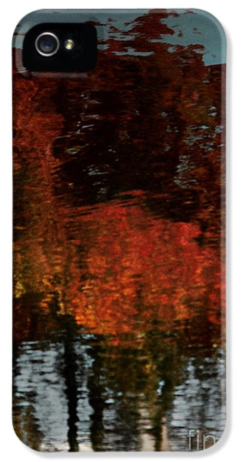 Trees IPhone 5 / 5s Case featuring the photograph Say It Softly by Dana DiPasquale