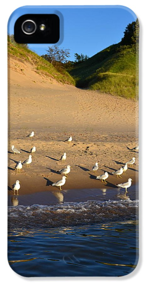 Lake Michigan IPhone 5 / 5s Case featuring the photograph Seagulls At The Bowl by Michelle Calkins