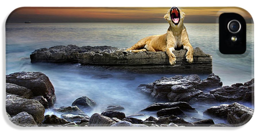 African IPhone 5 / 5s Case featuring the photograph Surreal Lioness by Carlos Caetano