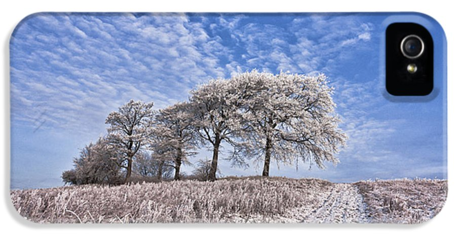 south Lanarkshire Newton winter Scene Cold Trees Winding Pat IPhone 5 / 5s Case featuring the photograph Trees In The Snow by John Farnan