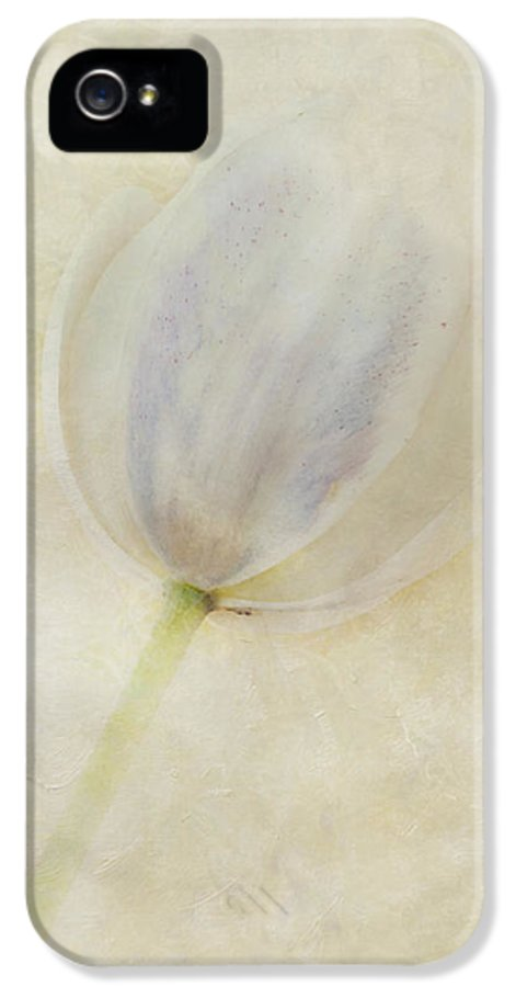 Flora IPhone 5 / 5s Case featuring the photograph Tulip 1 by Marion Galt