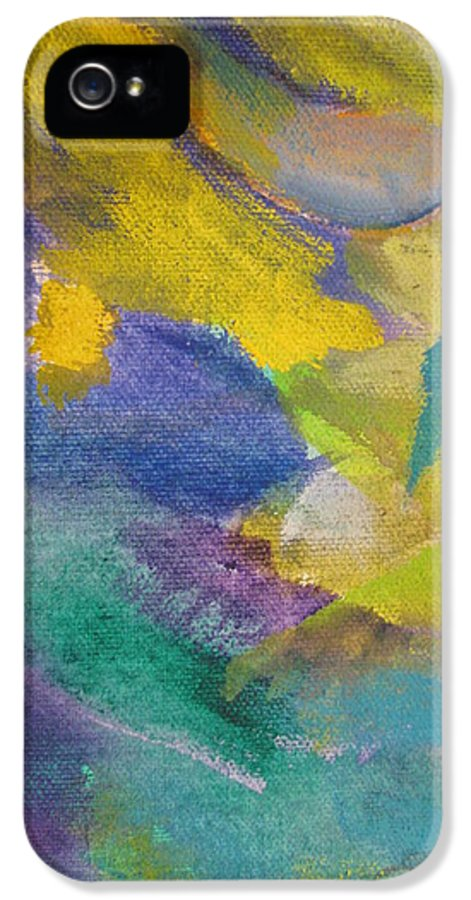 Abstact IPhone 5 / 5s Case featuring the painting Abstract Close Up 13 by Anita Burgermeister