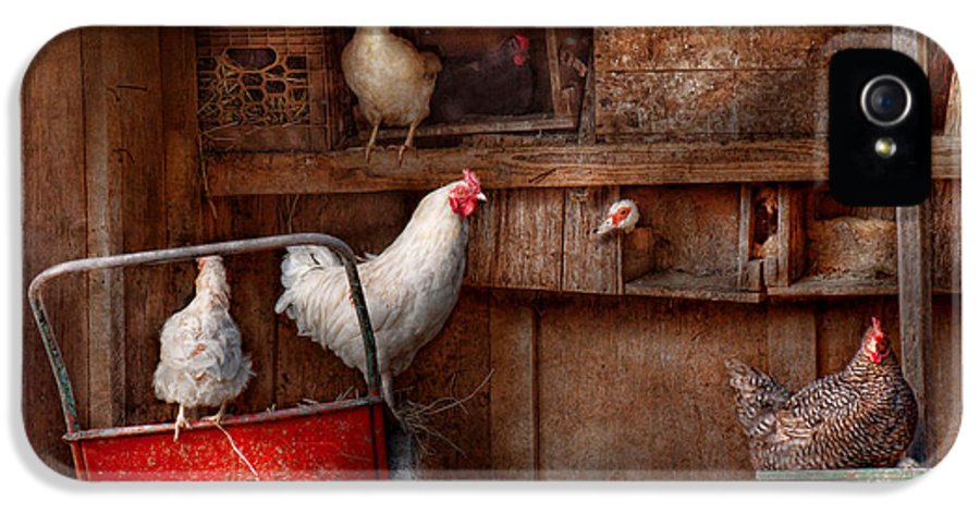 Chicken IPhone 5 / 5s Case featuring the photograph Animal - Chicken - The Duck Is A Spy by Mike Savad