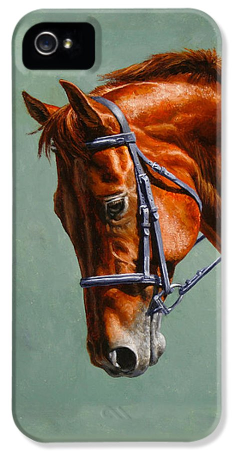 Horse IPhone 5 / 5s Case featuring the painting Horse Painting - Focus by Crista Forest