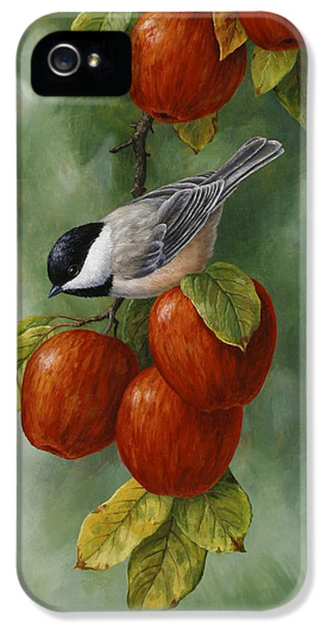 Birds IPhone 5 / 5s Case featuring the painting Bird Painting - Apple Harvest Chickadees by Crista Forest