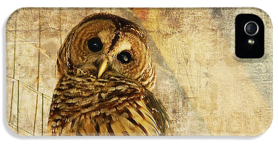 Owl IPhone 5 / 5s Case featuring the photograph Barred Owl by Lois Bryan