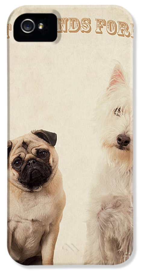 Bff IPhone 5 / 5s Case featuring the photograph Best Friends Forever by Edward Fielding