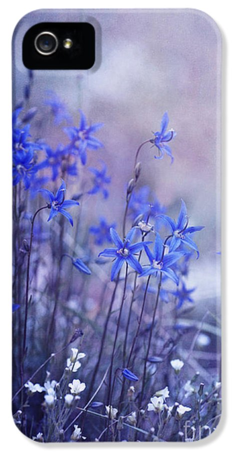 Yukon Bellflower IPhone 5 / 5s Case featuring the photograph Bluebell Heaven by Priska Wettstein