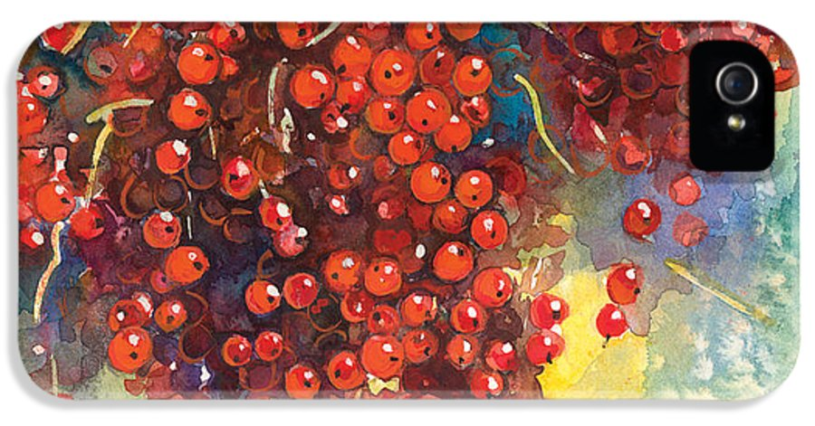 Watercolor IPhone 5 / 5s Case featuring the painting Currants Berries Painting by Svetlana Novikova