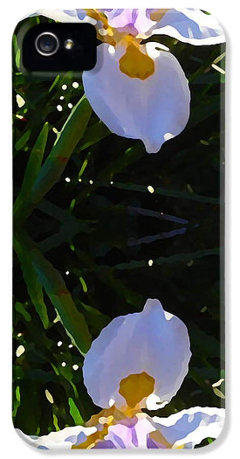 Daylily IPhone 5 / 5s Case featuring the painting Day Lily Reflection by Amy Vangsgard
